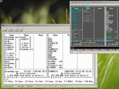 Display Dumper 0.5 Screenshot