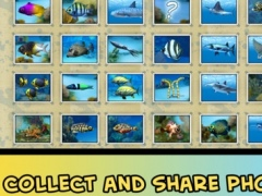 Divemaster - the Scuba Diver Photo Expedition Adventure game with sharks and dolphins 1.1.1 Screenshot