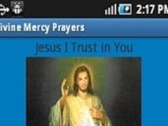 Divine Mercy Novena Pamphlet Ebook Download