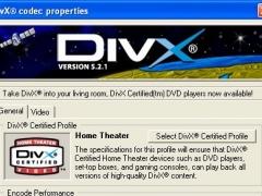 DivX Player (with DivX Codec) for 2K/XP 5.2.1 Screenshot