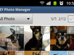 DIY Photo Manager 1.12 Screenshot