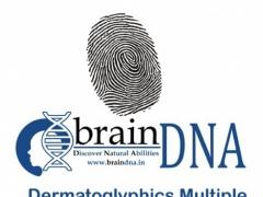 DMIT by Brain DNA 1.2 Screenshot