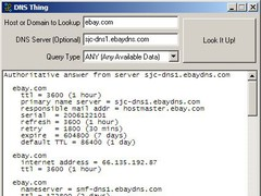 DNS Thing 1.0a Screenshot