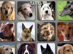 Dog n' Puppy Barking Sounds 1.2.7 Screenshot