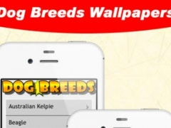 Dog Breeds WallPapers 1.7 Screenshot
