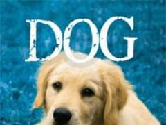 Dog Soundboard 1.0 Screenshot