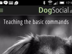Dog Training Basics 1.0.2 Screenshot