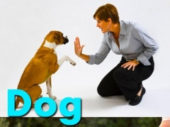 Dog Training Language 1.0 Screenshot