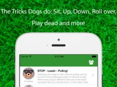 Dog Whistler : A Step by Step Guide to Teaching Your Puppy and Dog clicker sound 1.1 Screenshot