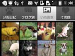 DogBoard 1.4.2 Screenshot