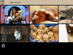 Dogs and Cats Wallpapers 1.0.1 Screenshot