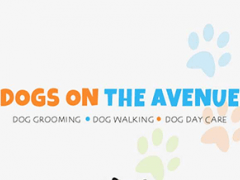 Dogs On The Avenue 4.5.2 Screenshot
