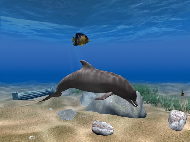 Living Dolphins 3d Screensaver - Free downloads and ...