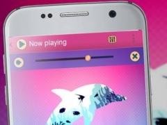 Dolphin PlayerPro Theme 1.2 Screenshot