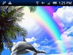 Dolphin Rainbow 2.5.0 Screenshot