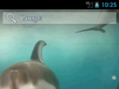 Dolphins HD. Live Wallpaper. 1.0 Screenshot