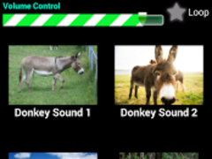 Donkey Sounds Prank 2.0 Screenshot