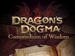 Dragon's Dogma Wisdom 1.00.01 Screenshot