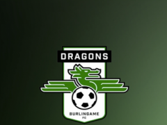 Dragons Supporters  Screenshot