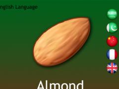 Dry Fruits Dictionary Multi 1.0 Screenshot