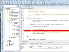 DSV PHP Editor 3.2.1 Screenshot