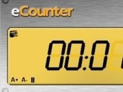 e-Counter 5.0.2009 Screenshot