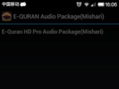 E-QURAN PRO IN MALAYSIAN AUDIO 0.0.2 Screenshot