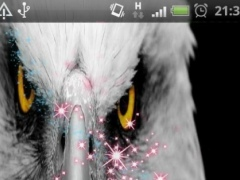 eagle Eyes Live Wallpaper 1.1 Screenshot