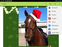 eCards: Greeting Cards Creator 2.0.5 Screenshot