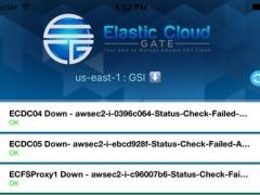 ECG - Elastic Cloud Gate Mobile 1.2 Screenshot