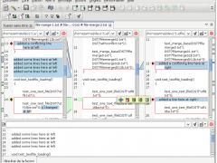 ECMerge Standard (Linux) 2.5 Screenshot