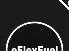 eFlexFuel Commander 3 3.11 Screenshot