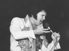 Elvis Presley Live Wallpapers 23 Free Download