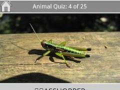 English Words: Animal Quiz 1.0 Screenshot