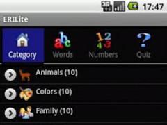 ERI Lite 1.3 Screenshot