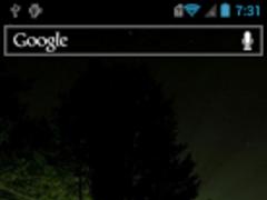 Evening forest Live Wallpaper 1.1 Screenshot