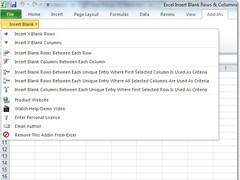 Excel Insert Blank Rows & Columns Between Data Software 7.0 Screenshot