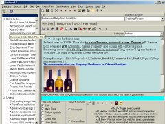 ExEntryC's Junior (knowledgebase) 3.6 Screenshot
