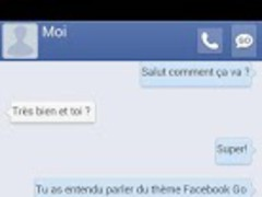 Facebook GO SMS theme 1.1 Screenshot