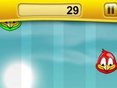 Falling Birds - A Fun Bird Game 1.2 Screenshot