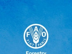 FAO Forestry 1.01 Screenshot