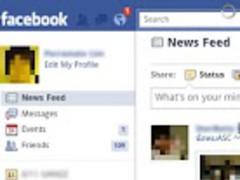 FbPro 1.0 Screenshot