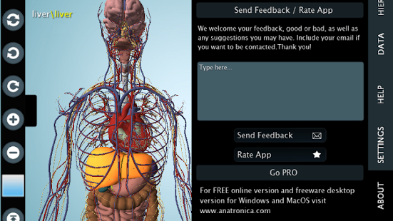 Female Anatomy 3d Anatronica 207 Free Download
