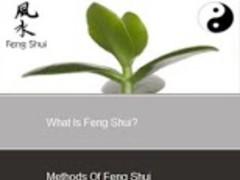 Feng Shui 1.2 Screenshot