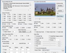 FFVCL - Delphi FFmpeg VCL Components 5.0 Screenshot