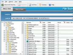 file scavenger 3.2 professional license key