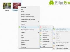 FilerFrog 2.2.0 Screenshot