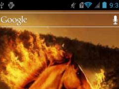 Fire breathing horse LWP 1.0 Screenshot