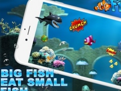 Fish Meal : Fast avoid Hungry Sharks 1.0 Screenshot