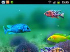 Fish Tank Android Wallpaper 1.0.1 Screenshot